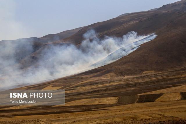 احتمال آتش سوزی در مراتع البرز وجود دارد