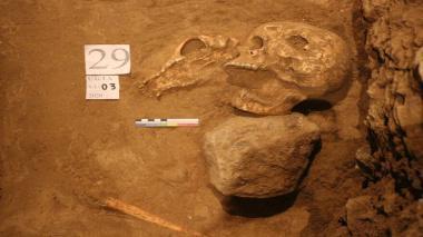 کشف نقش برجسته جدید از چهره انسان در تخت جمشید