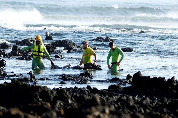اجساد 11 پناهجو در سواحل ونزوئلا کشف شد